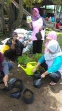 Pelatihan Pembuatan Kampung Sayur